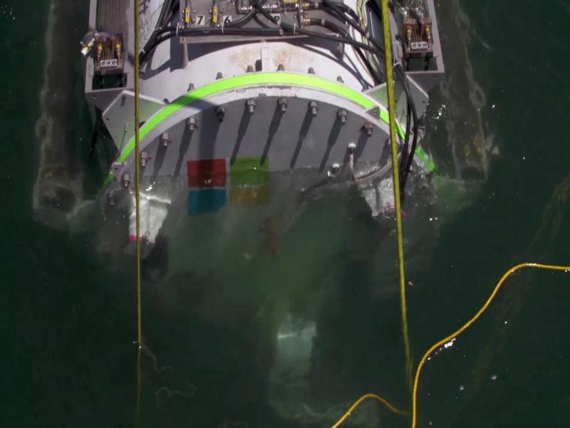 Data center submarino da Microsoft observa vida subaquática